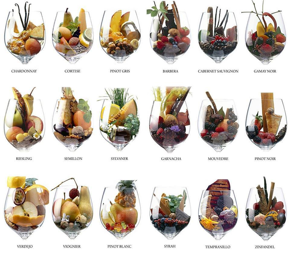 aromas-do-vinho